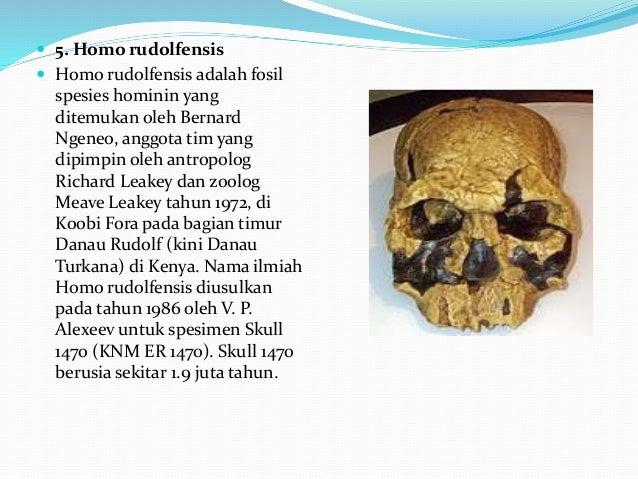 Manusia Purba Di Luar Indonesia