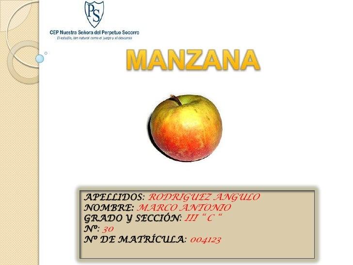"""APELLIDOS: RODRIGUEZ ANGULO NOMBRE: MARCO ANTONIO GRADO Y SECCIÓN: III """" C """" Nº: 30 Nº DE MATRÍCULA: 004123"""