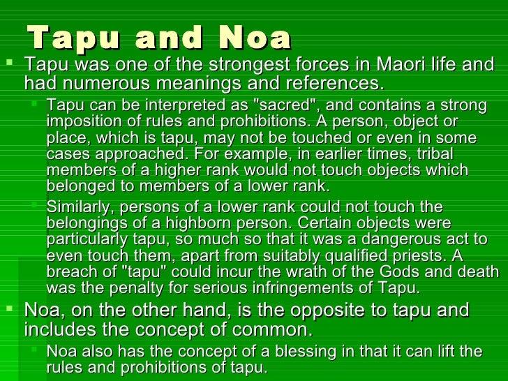 Maori Tapu: Maori Art And Architecture