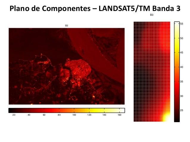 Sensoriamento remoto aplicado ao estudo da saúde de floresta nativas 2