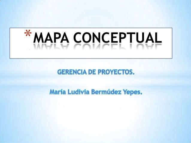 *MAPA CONCEPTUAL