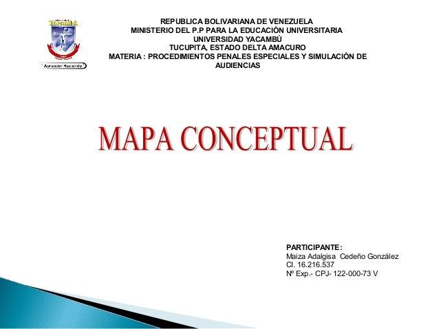 Circuito Judicial : Mapa conceptual circuito judicial penal