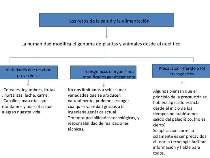 Los retos de la salud y la alimentación <br />            La humanidad modifica el genoma de plantas y animales ...