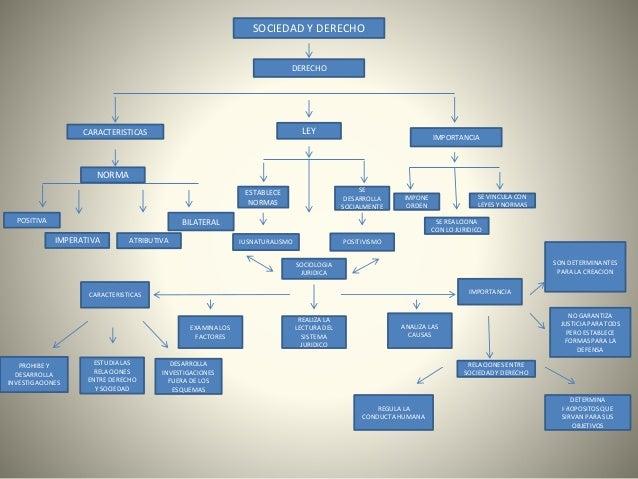 Mapa conceptual de la sociedad y el derecho
