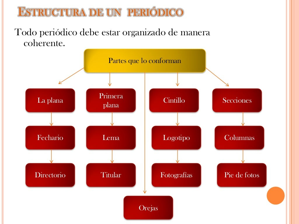 Mapa conceptual estructura de un periodico for Estructura del periodico mural