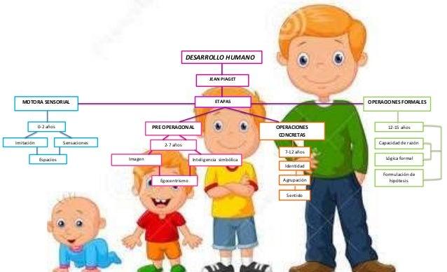 Etapas Desarrollo Humano Desarrollo Humano Slideshare Share The Knownledge Concepciones