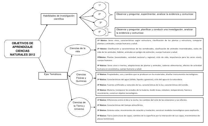 Mapa Conceptual Objetivos De Aprendizaje De Cs Naturales