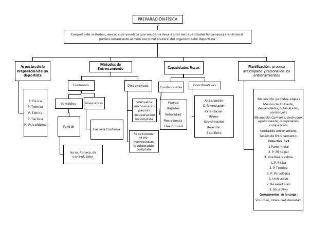 Mapa conceptual preparación física