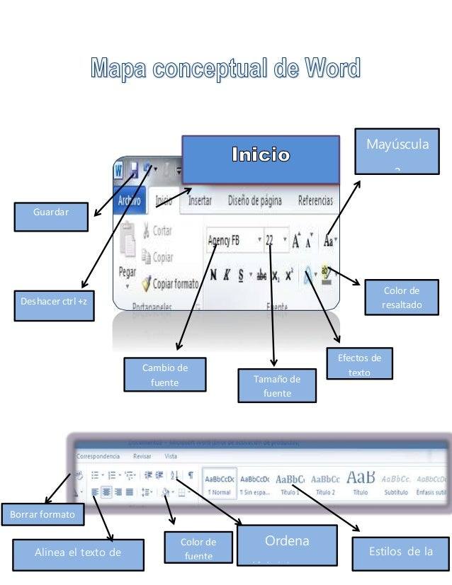 mapa conceptual word