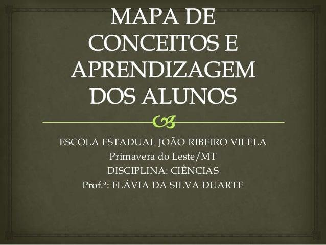 ESCOLA ESTADUAL JOÃO RIBEIRO VILELA           Primavera do Leste/MT          DISCIPLINA: CIÊNCIAS    Prof.ª: FLÁVIA DA SIL...