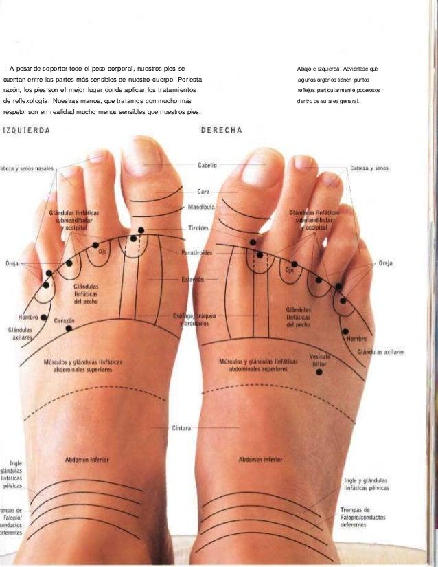 Mapa de los pies