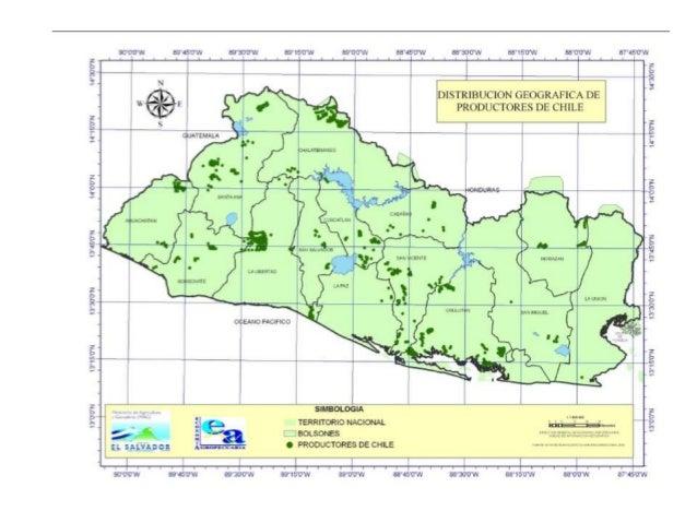 Mapa De Produccion De Hortalizas En El Salvador