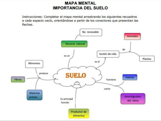 Mapa mental importancia del suelo for Importancia de los suelos