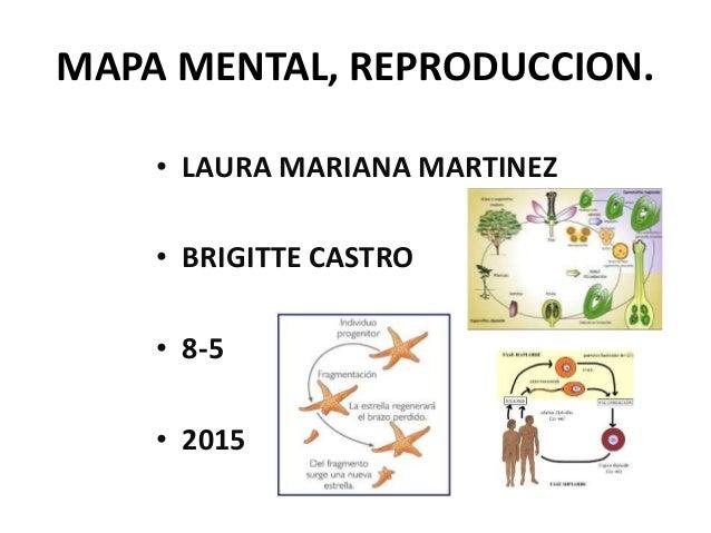 Invertebrados y vertebrados reproduccion asexual de las plantas