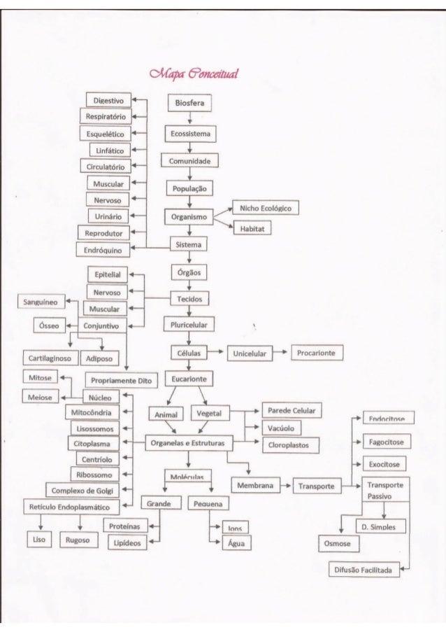 Oêfcípcr 6302160722151 Biosfera  ê  v;   População     Circulatório 3                                                     ...