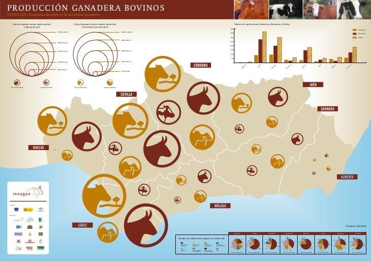 PRODUCCIÓN GANADERA BOVINOSINNOGAN: Programa de apoyo a la actividad ganadera      Censo de ganado vacuno según aptitud:  ...