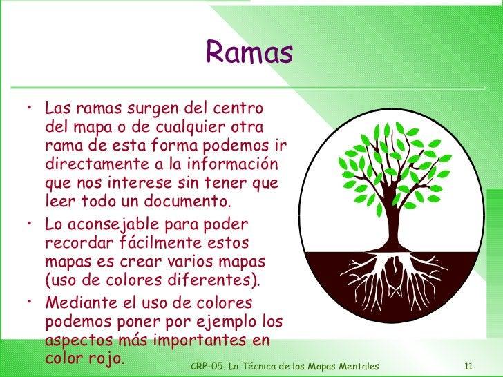 Ramas <ul><li>Las ramas surgen del centro del mapa o de cualquier otra rama de esta forma podemos ir directamente a la inf...