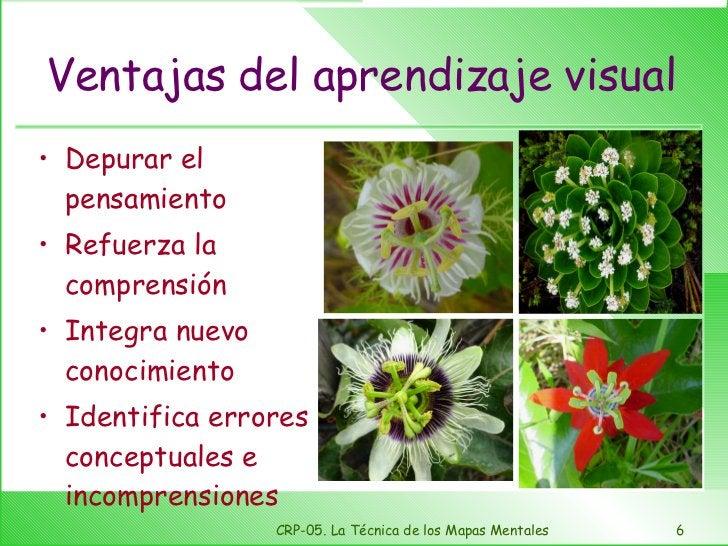Ventajas del aprendizaje visual <ul><li>Depurar el pensamiento </li></ul><ul><li>Refuerza la comprensión </li></ul><ul><li...