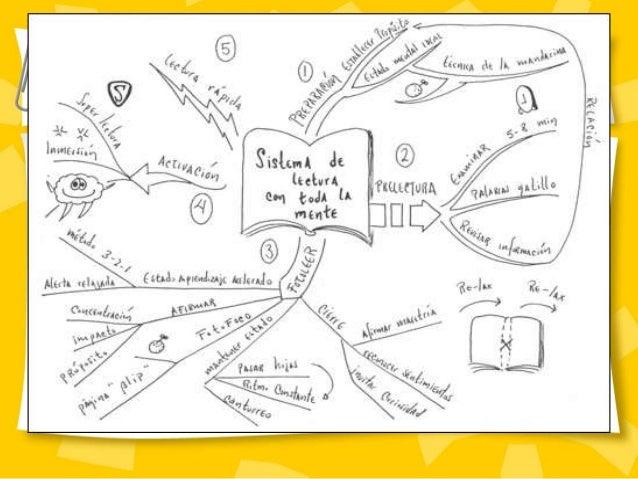 Mapas Conceptuales Mentales Y Sinopticos