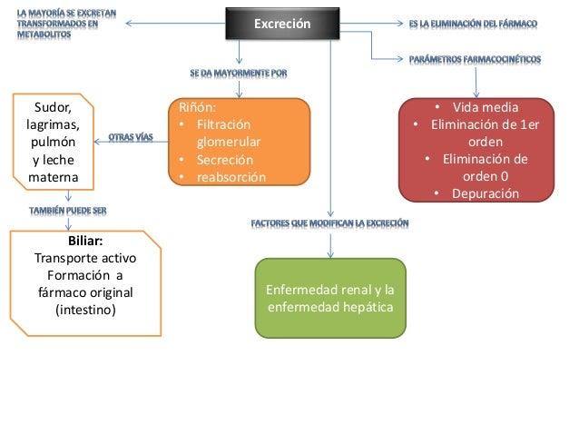 Publicidad y marketing y Ibuprofeno metabolismo