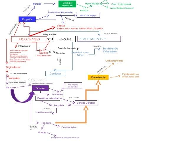 Mapa De Las Emociones.Mapas Mentales Instinto Y Emociones 2
