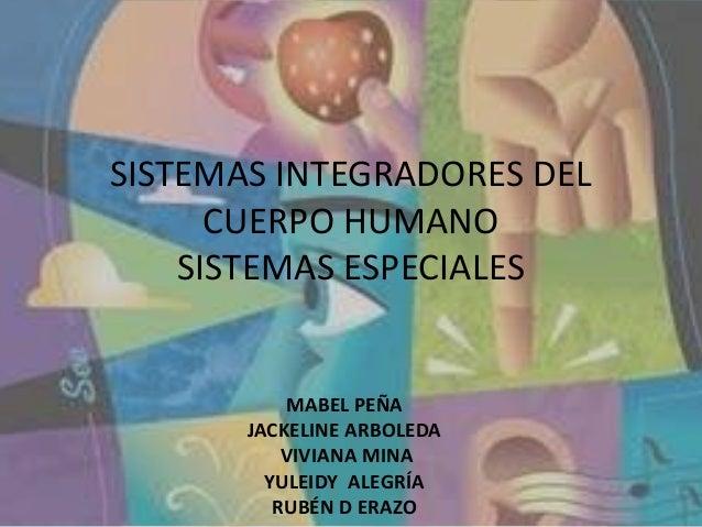 SISTEMAS INTEGRADORES DEL CUERPO HUMANO SISTEMAS ESPECIALES  MABEL PEÑA JACKELINE ARBOLEDA VIVIANA MINA YULEIDY ALEGRÍA RU...