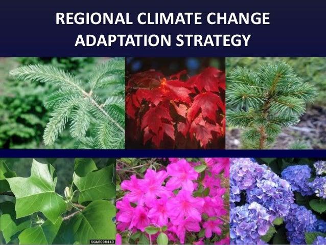 REGIONAL CLIMATE CHANGE ADAPTATION STRATEGY
