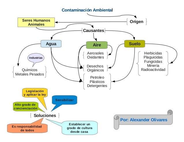 Contaminación AmbientalAgua Aire SueloSeres HumanosAnimalesOrigenCausantesPetroleoPlásticosDetergentesDesechosOrgánicosHer...