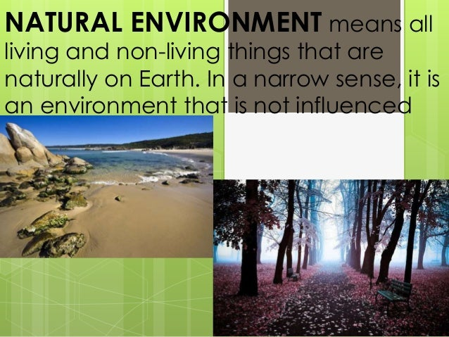 mankind and the destruction of the natural environment As well as bringing the link between population and environment to  while this is a triumph for mankind,  they may also be forced to deplete scarce natural.