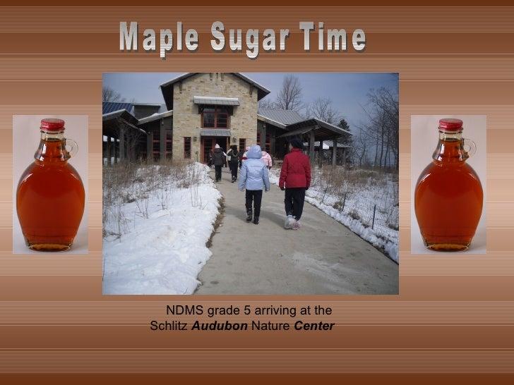 NDMS grade 5 arriving at the Schlitz  Audubon  Nature  Center Maple Sugar Time