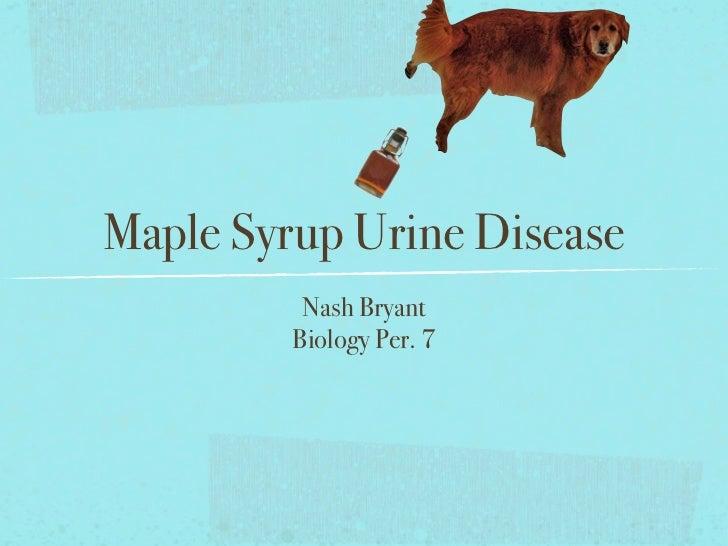 Maple Syrup Urine Disease          Nash Bryant         Biology Per. 7