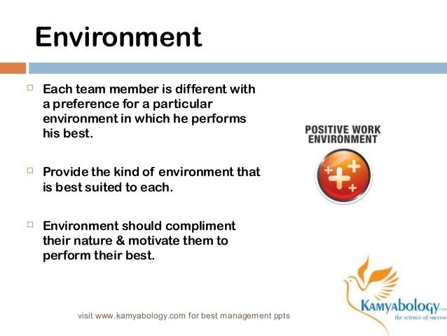 Environment   Each team member is different with  a preference for a particular  environment in which he performs  his be...