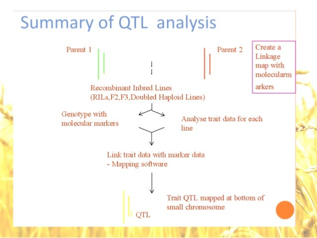 mapping and qtl