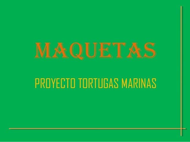 MAQUETASPROYECTO TORTUGAS MARINAS