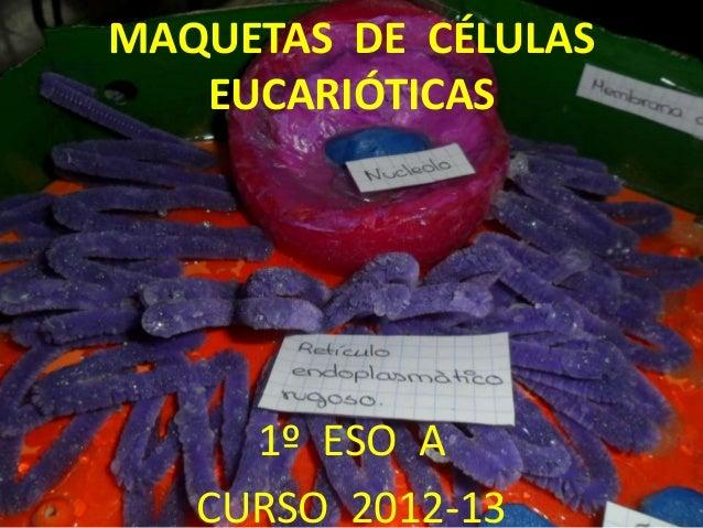 MAQUETAS DE CÉLULAS   EUCARIÓTICAS     1º ESO A   CURSO 2012-13