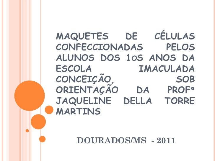 MAQUETES   DE   CÉLULASCONFECCIONADAS    PELOSALUNOS DOS 1OS ANOS DAESCOLA        IMACULADACONCEIÇÃO,           SOBORIENTA...