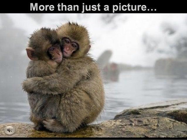 Mas que fotografia y amistad