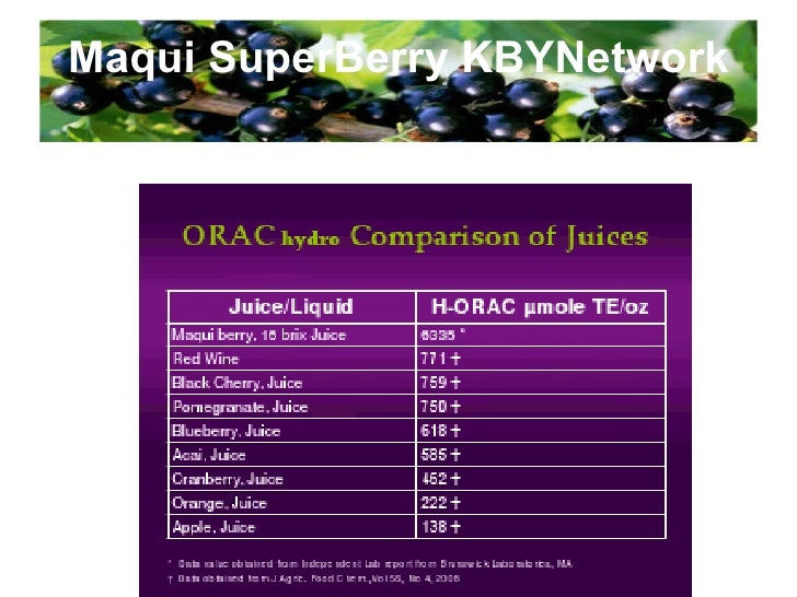 Maqui SuperBerry KBYNetwork Import Permit from Food Safety & Quality Div., Min. of Health, Malaysia