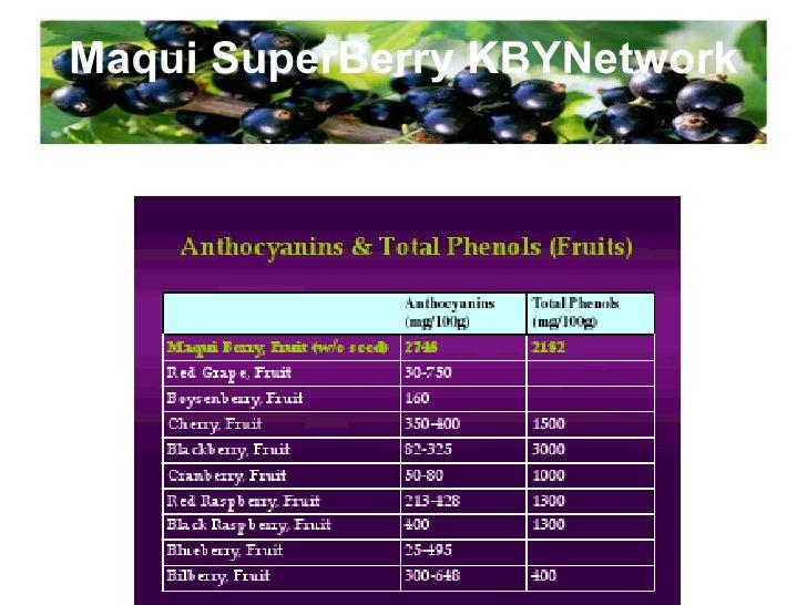 hala Maqui SuperBerry KBYNetwork Halal Certificate