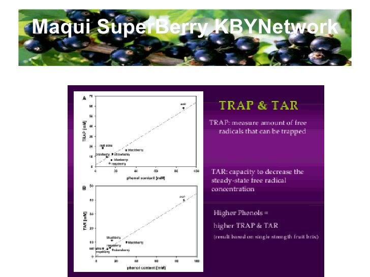 Maqui SuperBerry KBYNetwork