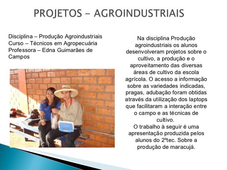 Na disciplina Produção agroindustriais os alunos desenvolveram projetos sobre o cultivo, a produção e o aproveitamento das...