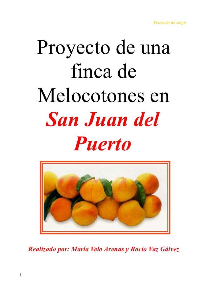 Proyecto de riego      Proyecto de una         finca de      Melocotones en       San Juan del          Puerto    Realizad...