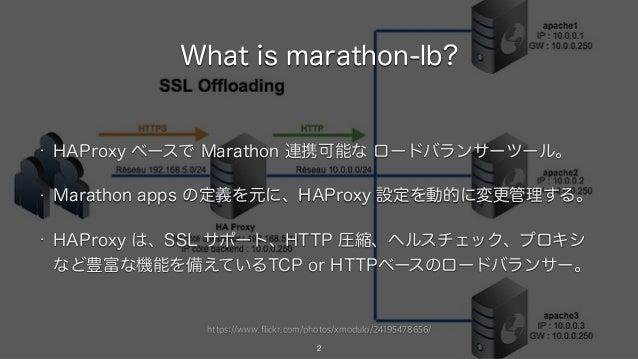 https://www.flickr.com/photos/xmodulo/24195478656/ What is marathon-lb? • HAProxy ベースで Marathon 連携可能な ロードバランサーツール。 • Marat...