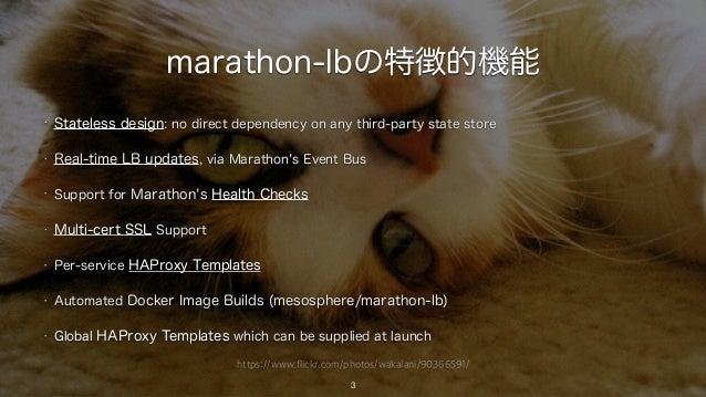 https://www.flickr.com/photos/wakalani/90366591/ marathon-lbの特徴的機能 3 • Stateless design: no direct dependency on any third...