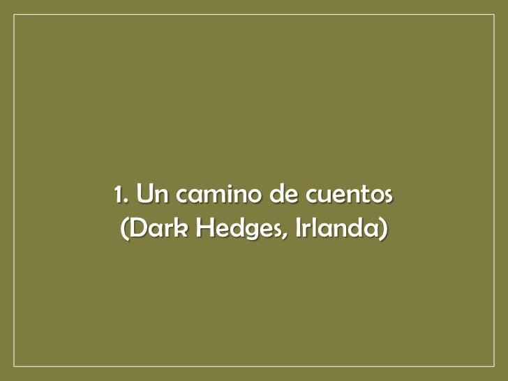 1. Un camino de cuentos (Dark Hedges, Irlanda)