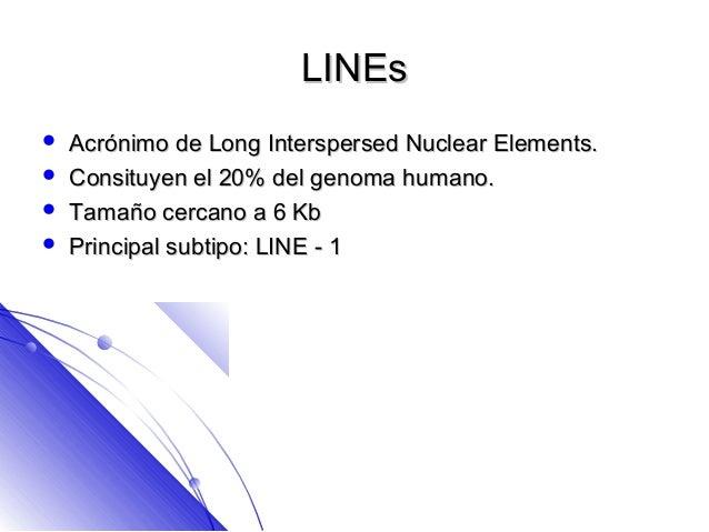 LINEs   Acrónimo de Long Interspersed Nuclear Elements.   Consituyen el 20% del genoma humano.   Tamaño cercano a 6 Kb...