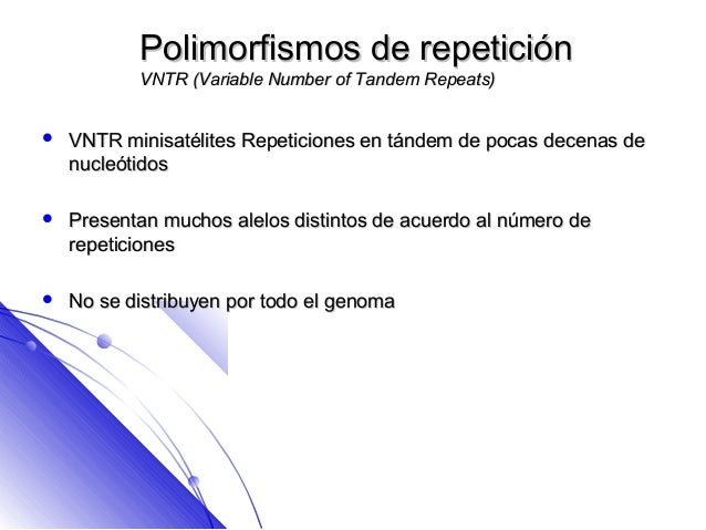 Polimorfismos de repetición           VNTR (Variable Number of Tandem Repeats)   VNTR minisatélites Repeticiones en tánde...