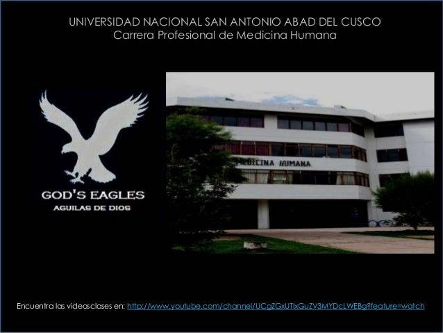 UNIVERSIDAD NACIONAL SAN ANTONIO ABAD DEL CUSCOCarrera Profesional de Medicina HumanaEncuentra las videosclases en: http:/...