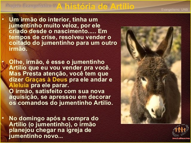 A história de Artílio • Um irmão do interior, tinha um jumentinho muito veloz, por ele criado desde o nascimento..... Em t...