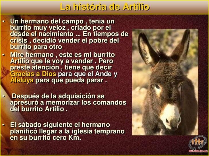 La história de Artílio<br />Un hermano del campo , tenia un burrito muy veloz , criado por el desde el nacimiento ... En t...